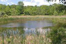Woodland Hills Nature Park, Farmington Hills, United States
