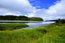 Willapa National Wildlife Refuge, Ilwaco, United States