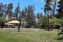 Yanature, Riviere Noire, Mauritius
