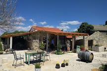 Senjkovic Winery, Nerezisca, Croatia
