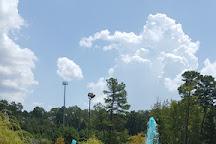 Big Rock Fun Park, Little Rock, United States