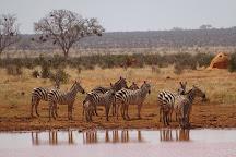 KT & Safaris, Mombasa, Kenya