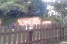 Tan's Camellia Garden, Tanah Rata, Malaysia