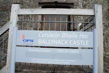 Ballyhack Castle, County Wexford, Ireland