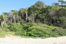 Praia do Sissial e dos Ilheus, Governador Celso Ramos, Brazil