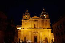 Domus Romana, Rabat, Malta