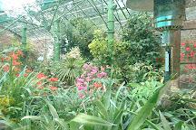 Stanton Hall Gardens and Nursery, Morpeth, United Kingdom