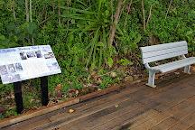 Kennedy Walking Track, Mission Beach, Australia