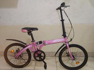 Rueda Bikes 9