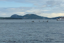 Outer Island Excursions, Anacortes, United States