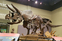 Burpee Museum of Natural History, Rockford, United States