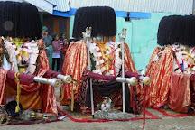 Bering Nag Temple, Sangla, India