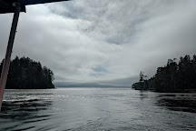 Seasmoke Whale Watching, Alert Bay, Canada