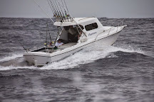 Smithys Fishing Charters, Minyama, Australia