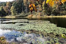Lake Hope State Park, McArthur, United States