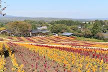 Nasu Flower World, Nasu-machi, Japan