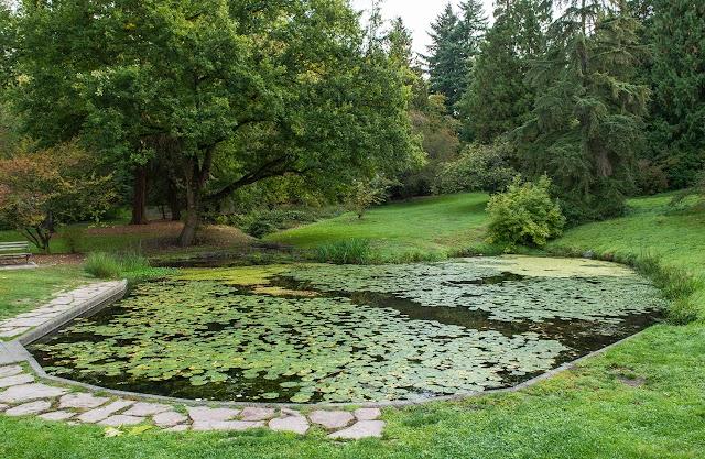 Washington Park Arboretum, Pacific Connections Gardens