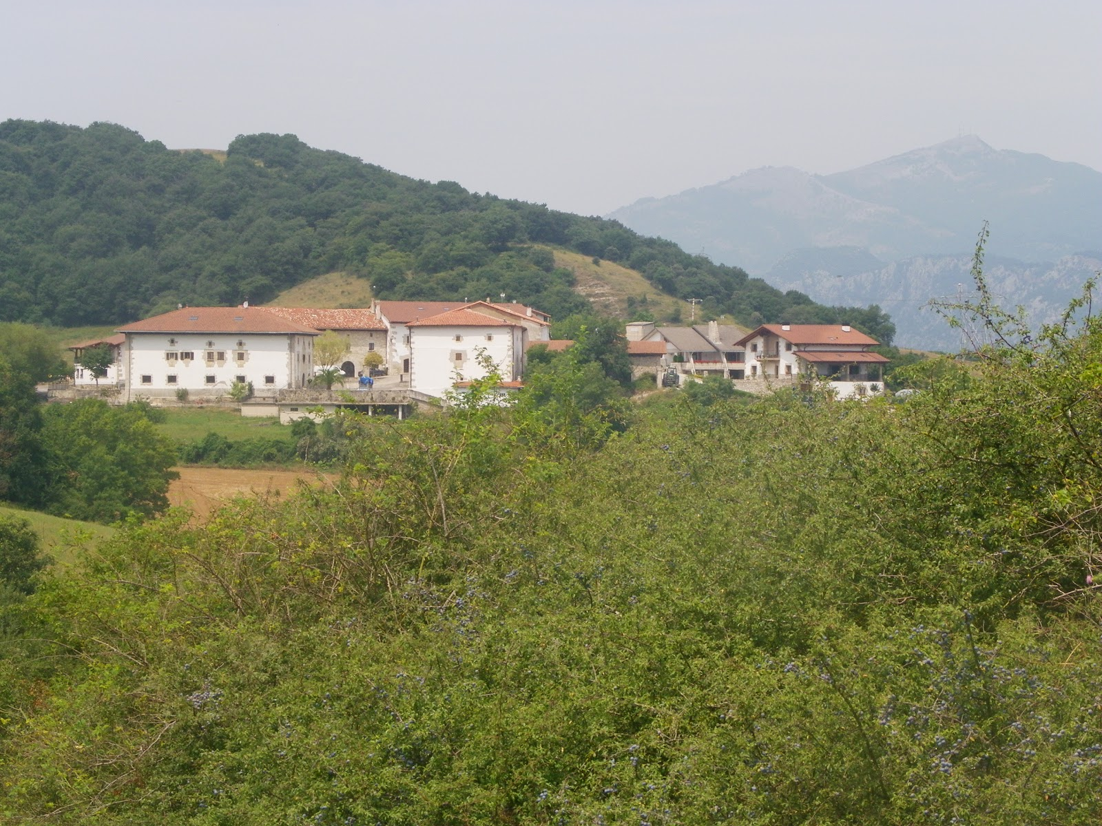 Urritzola
