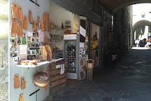 Siena Tartufi (truffle hunting), Siena, Italy