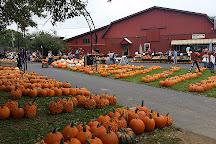Milburn Orchards, Elkton, United States