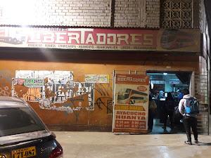 Turismo Libertadores 7