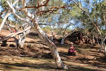Kalbarri Quadbike Safaris, Kalbarri, Australia