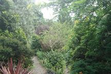 Dingle Garden, Welshpool, United Kingdom