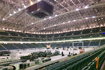 Friends Arena, Solna, Sweden