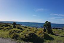 Griffiths Island, Port Fairy, Australia