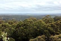 Gloucester National Park, Pemberton, Australia