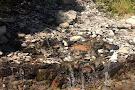 Vidae Falls