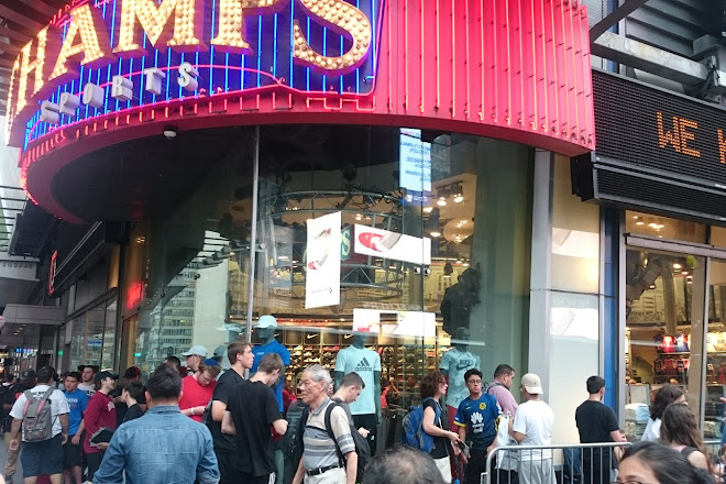 champs sports new york