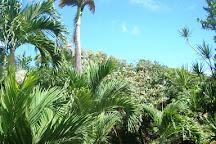 Owia Salt Pond, St. Vincent, St. Vincent and the Grenadines