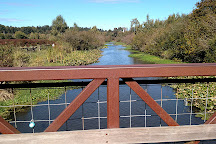 Mercer Slough Nature Park, Bellevue, United States