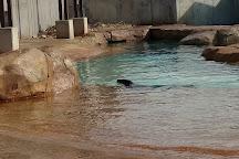 Henry Vilas Zoo, Madison, United States