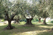 Santuario della Madonna dello Splendore, Giulianova, Italy