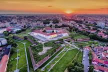 Oradea Town Hall, Oradea, Romania