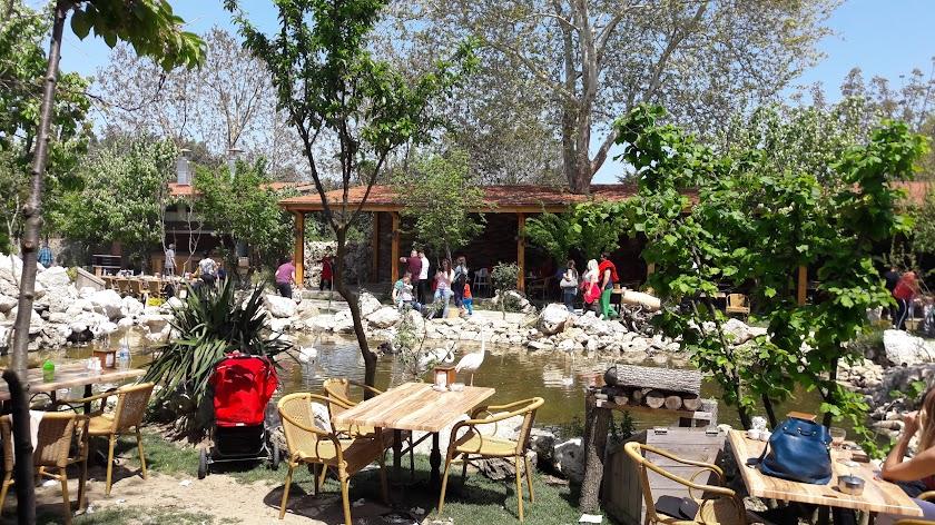 Flamingo köyü Resim 1