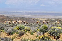 Akkerendam Nature Reserve, Calvinia, South Africa