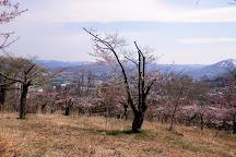 Temiya Park, Otaru, Japan
