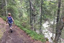 Rjukanfossen Waterfall, Amli, Norway