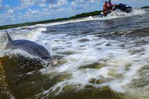 Avi's Water Sports, Marco Island, United States