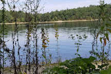 Walden Pond State Reservation, Concord, United States