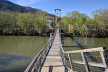 Buchanan Swinging Bridge, Buchanan, United States