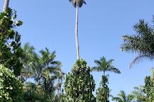 Royal Palm Reserve, Negril, Jamaica