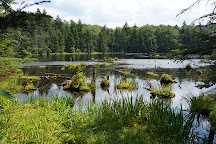 Woodford State Park, Woodford, United States