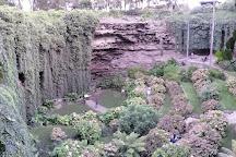 Umpherston Sinkhole, Mount Gambier, Australia