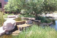 Salt River Fields, Scottsdale, United States