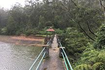Tiger Hill, Nilgiri, India