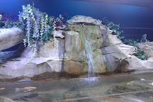 San Antonio Aquarium, San Antonio, United States